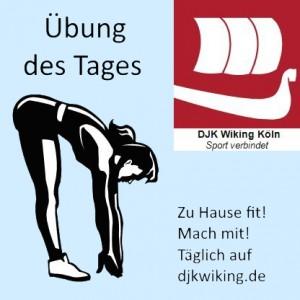 DJKWiking_Übung-des-Tages